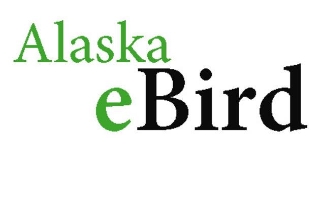 Alaska eBird