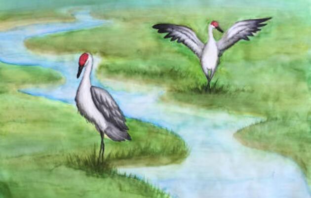 Alaska Migratory Bird Calendar