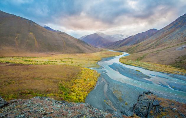 Alaska Arctic Fund