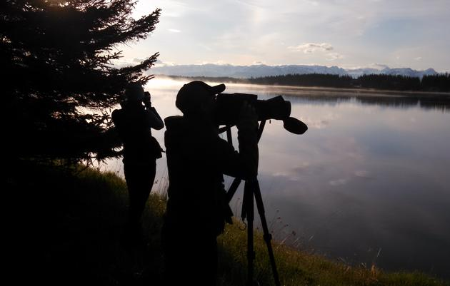 Birding Is the Perfect Activity While Practicing Social Distancing