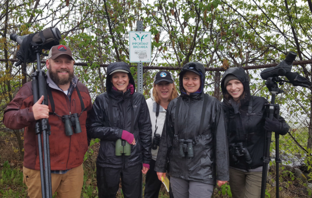 Volunteer with Audubon Alaska