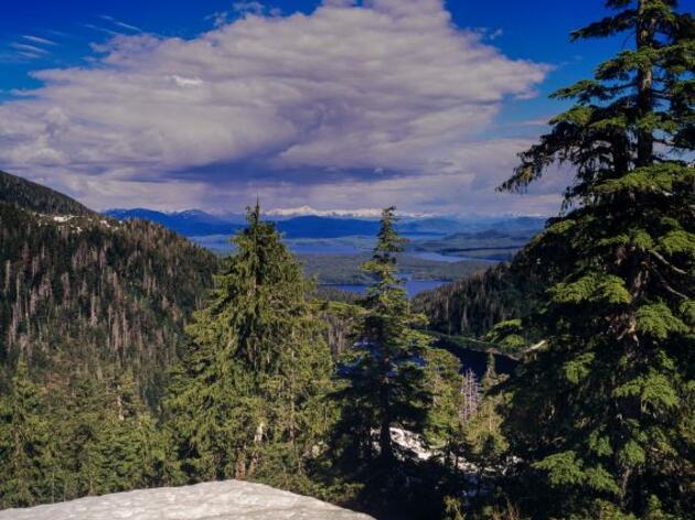 Alaska's Roadless Rule