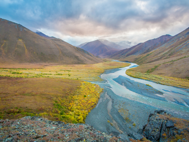 What do taxes, health care, and the Arctic Refuge all have in common?