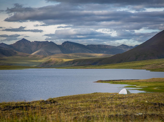 Report Series: Life in the Heart of the Arctic