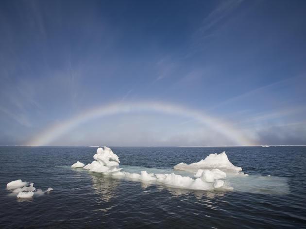 Vital Arctic Oceans Storymap