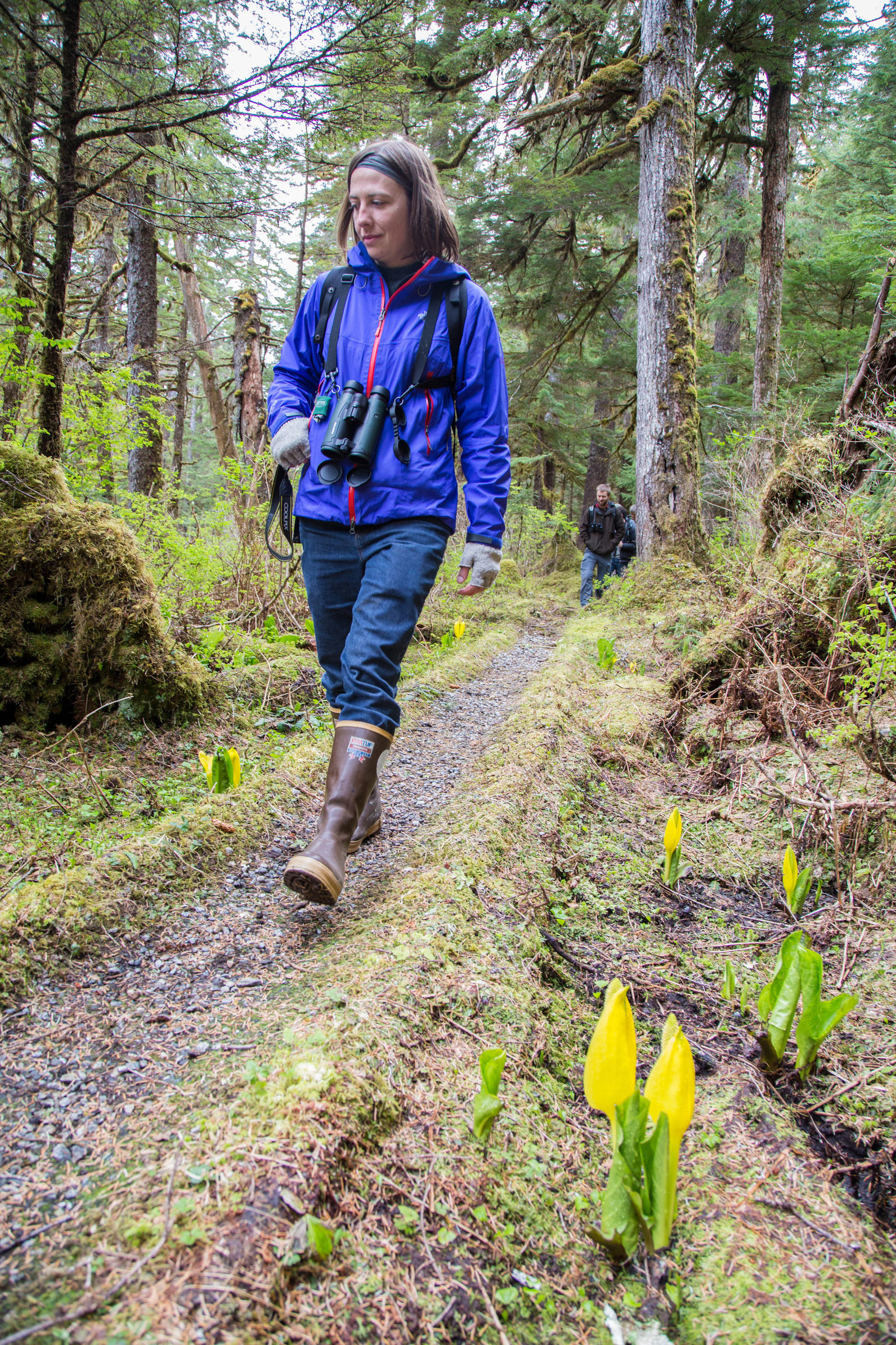 Walking in the Tongass