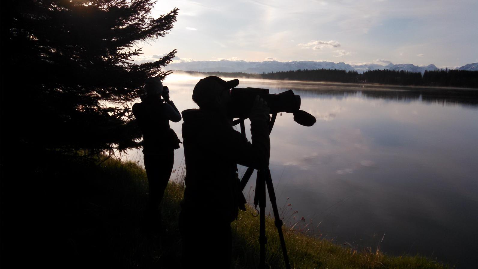 You can go birding while still maintaining social distance.