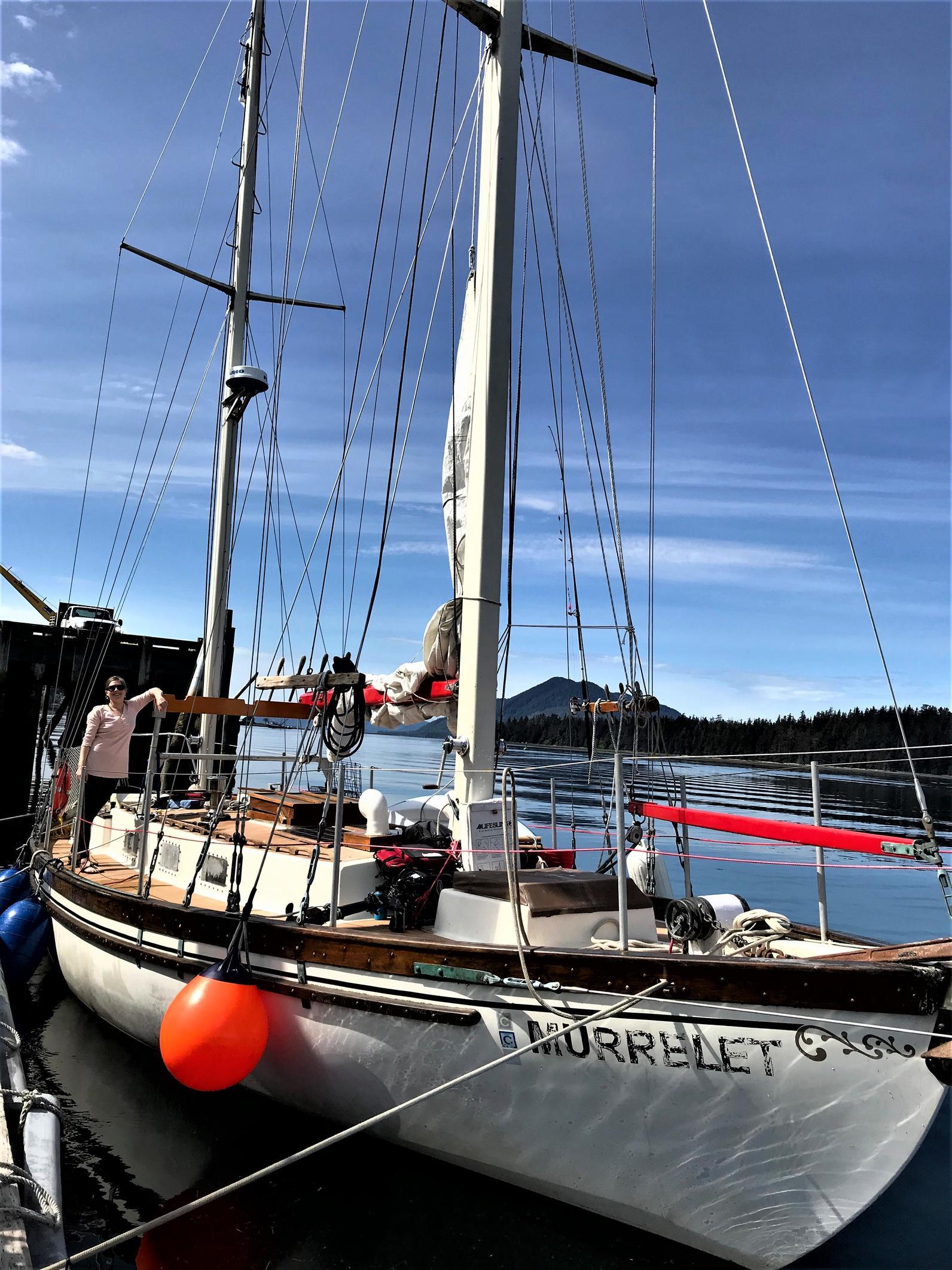 the Murrelet