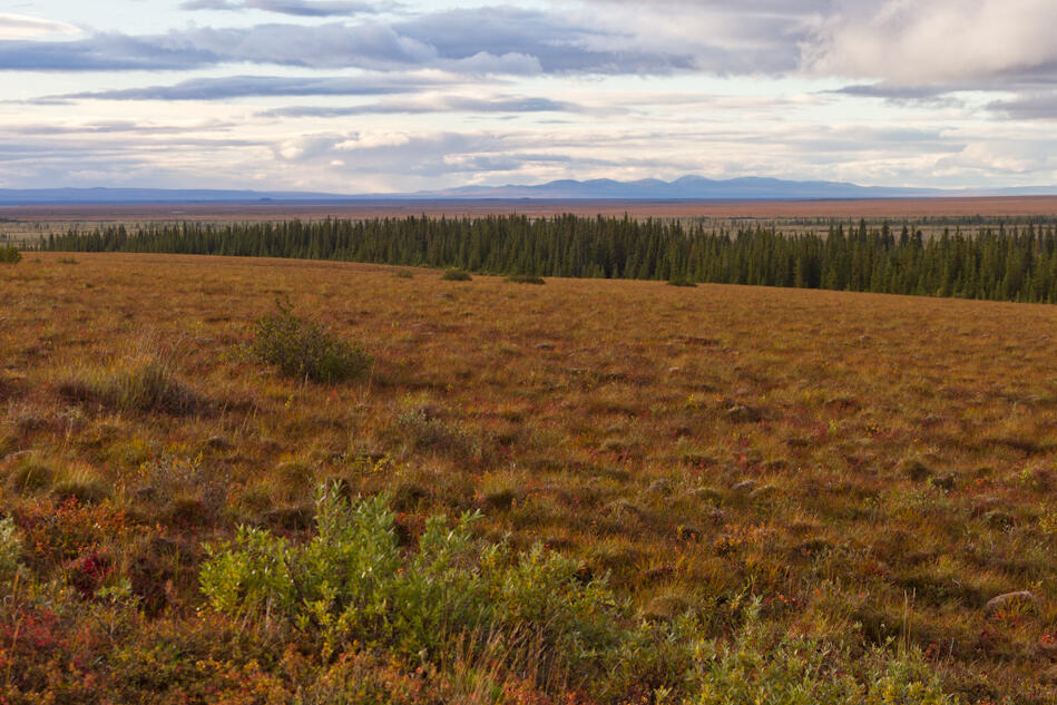 Western Alaska.