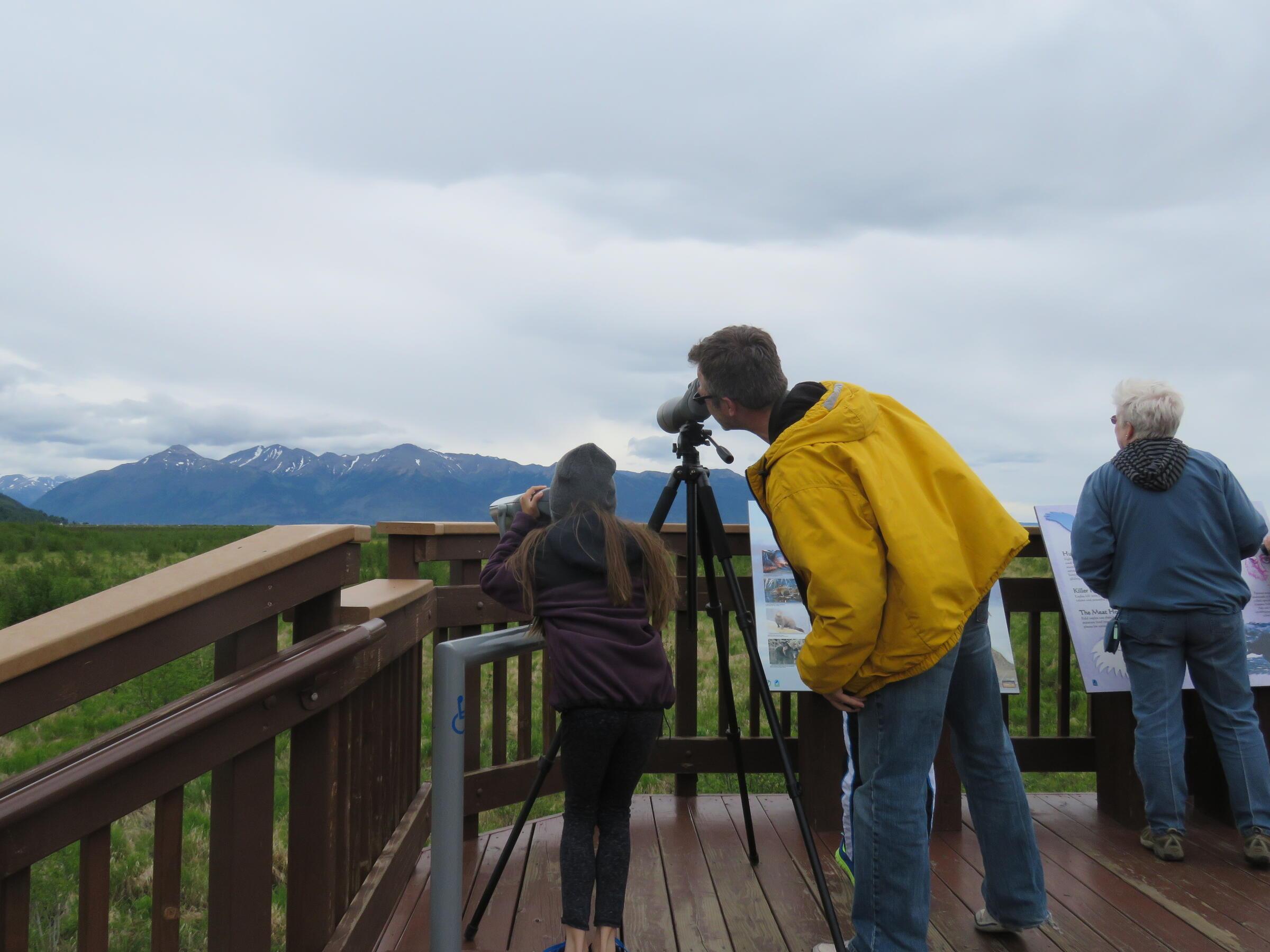 Birding at Potter Marsh 2