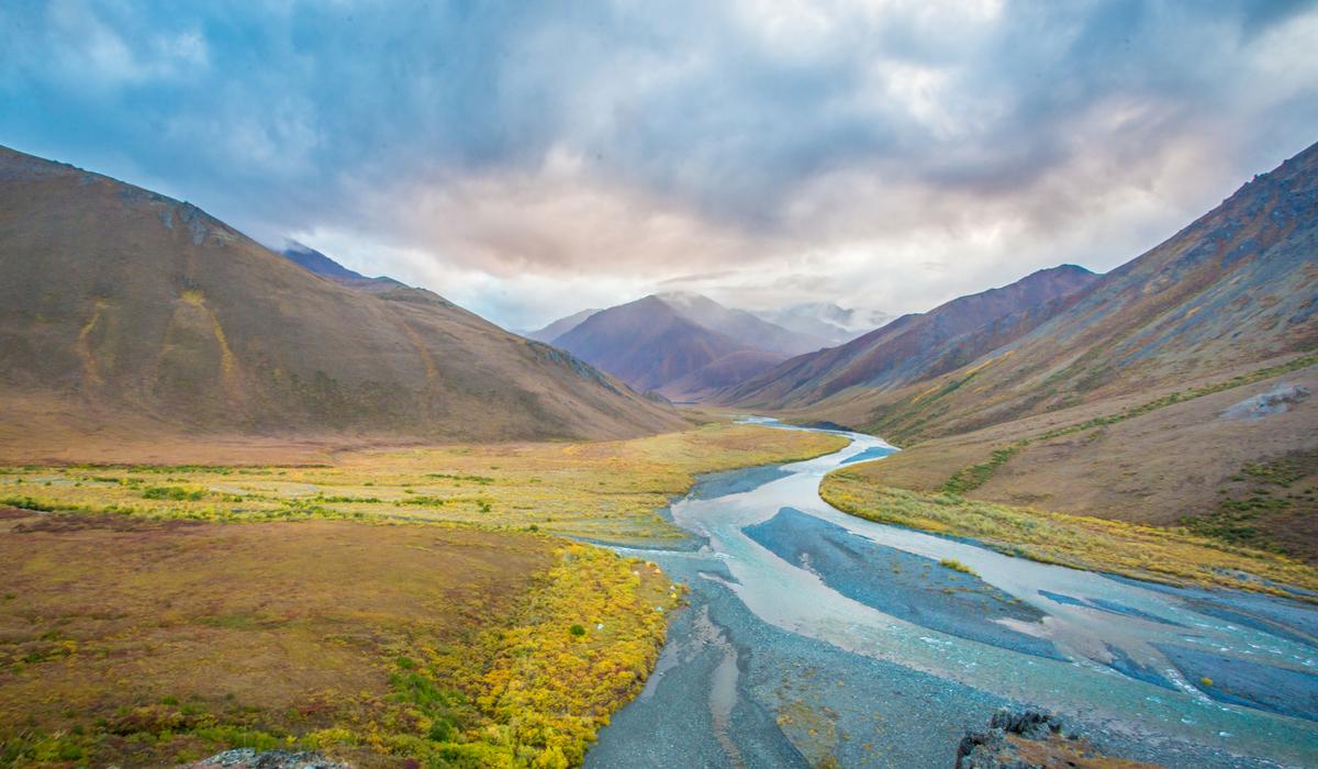 Arctic National Wildlife Refuge | Audubon Alaska